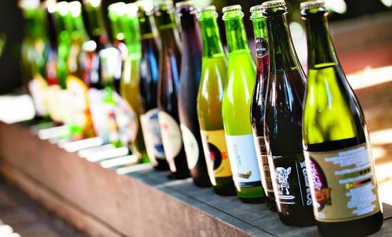 cata cervezas artesanales